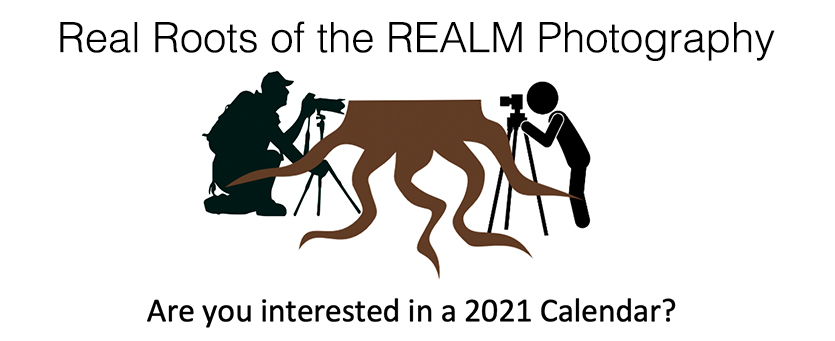 2020-Real-Roots-of-the-REALM-Photography-calendar-banner